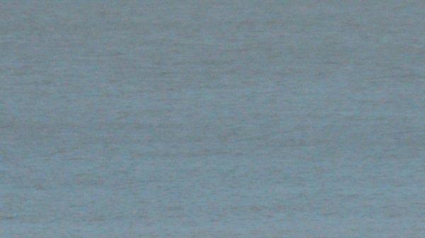 souvenir de la mer le 15/08/2012