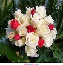 Bouquet de fleurs chaque être humain chaste et chaque bonne femme, l'amour de la bonté de l'humanité