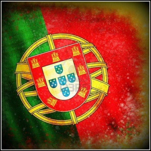 L'aventure Continuera... Obrigado a Selecção Portuguesa de Football !!!