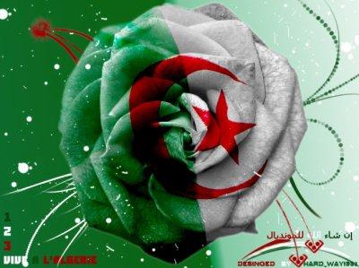 l algerie mon amour