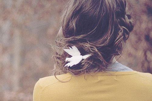 L'amour rend aveugle.