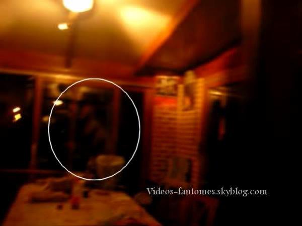 Un invité surprise Durée : 12 sec Lieu : France Année :  2009 Type : Amateur