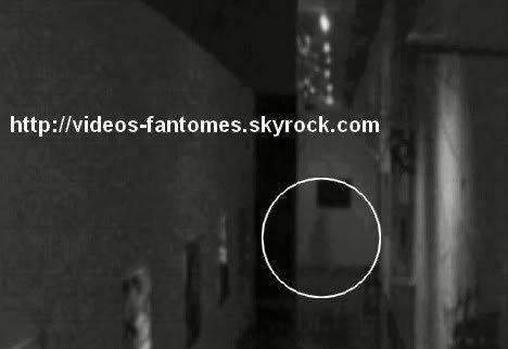 Fantôme dans un musée en Russie Durée : 2 min 27 Lieu : Galerie Tretyakovskaya, Moscou, Russie Année :  2009 Type : Vidéosurveillance