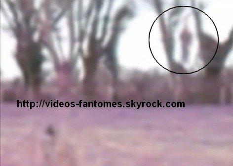 Le fantôme du pendu Durée : 30 sec Lieu : La Rochelle, France  Année :  2012 Type : Amateur