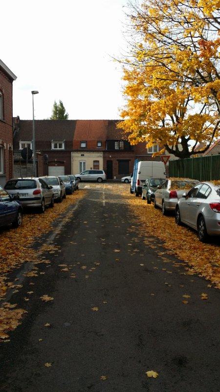 l'automne et bien la ^^