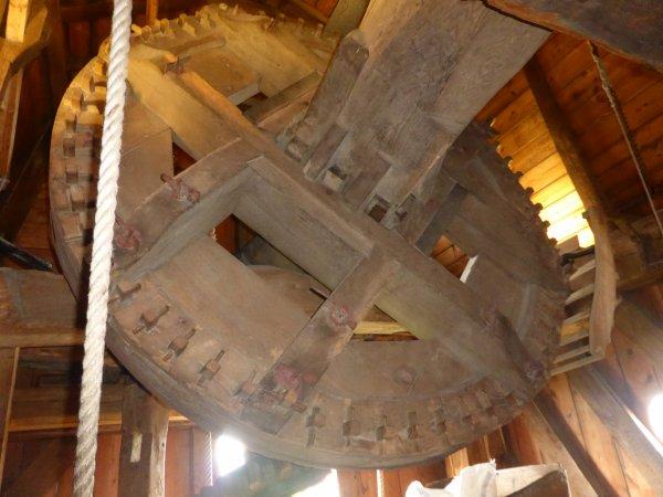 Visite des moulins de Bruges
