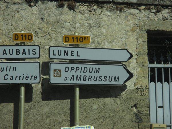 Visite Oppidum d'Ambrunsum (Villetelle)