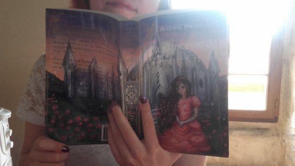 La Princesse de Glas de Cristal - Précommandes du Format Papier ouvertes !