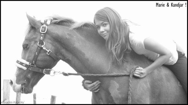 Le cheval est la projection des rêves que l'homme se fait de lui-même : fort, puissant, beau, magnifique.