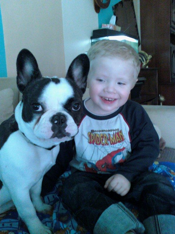mon fils kellyan avec sa chienne fiona un bouledogue francais