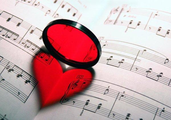 ♥ 3 - Le violon rapproche les gens. ♥