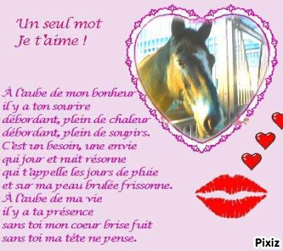 Ortis et moi, belle histoire d'amour.