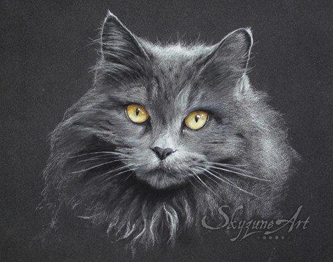 Chat gris aux pastels