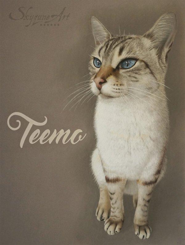 TEEMO