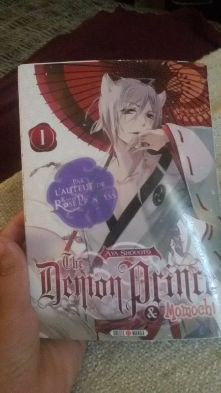 the demon prince et momochi tome 1