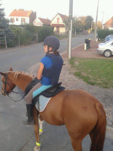 Ma vie avec les chevaux ce n'est pas qu'une passion c'est bien plus qu'une vie c'est aussi ma raison de vivre mes bébés je vous aimes pour la vie