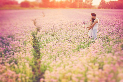 •   On  cherche  tous le bonheur, sans savoir ce qu'il est réellement. Mais le bonheur c'est •   un temps, une personne, un moment, où l'on veut que le temps s'arrête. ©   •