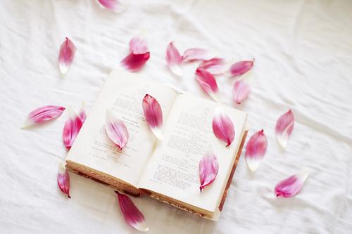 •    Les étoiles sont au ciel comme les lettres dans un livre.   •