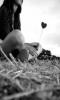 Croire en l'amour c'est comme croire au père noël, un jour ou l'autre la magie fait place à la déception..