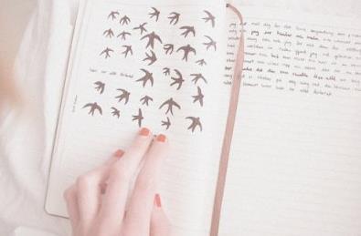 B.I.E.N.V.E.N.U.E sur lecture-de-livres