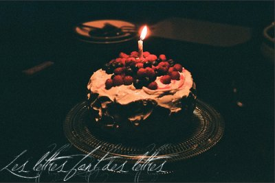 """"""" La vieillesse, c'est le temps où les anniversaires ne sont plus des fêtes..."""""""