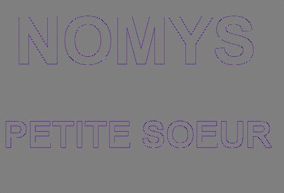 NOMYS - Petite Soeur Cover (2012)