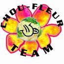 Photo de chou-fleur-team