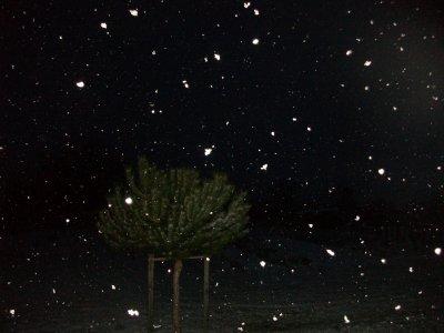 De la neige!