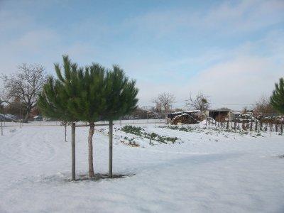 La neige a du mal à fondre