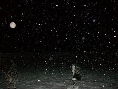 La neige tombe abondamment