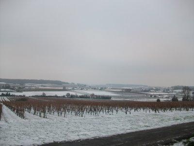 3.5 cm de neige au sol