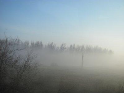 Brouillard puis ensoleillé et doux