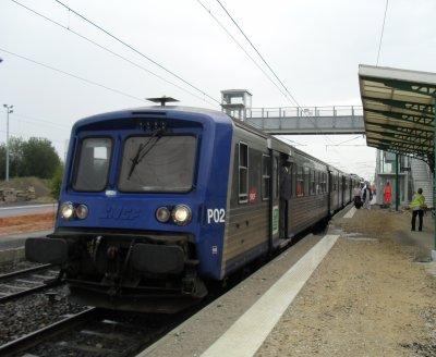 Gare de Rang-du-Fliers, TER