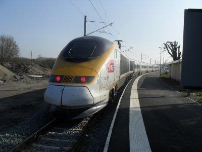 Gare de Rang-du-Fliers, TERGV