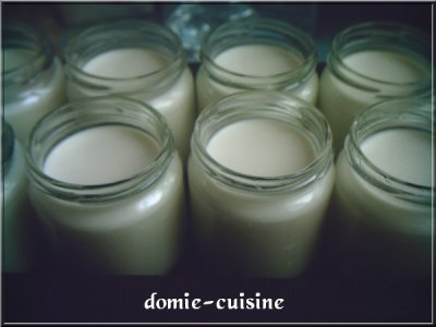 Yaourts maison avec yaourtiere et sans une vieille cocotte minute fait l 39 affaire blog de - Fabrication de yaourt maison sans yaourtiere ...