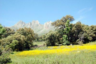 quelque paysages de ma region(kabykie)