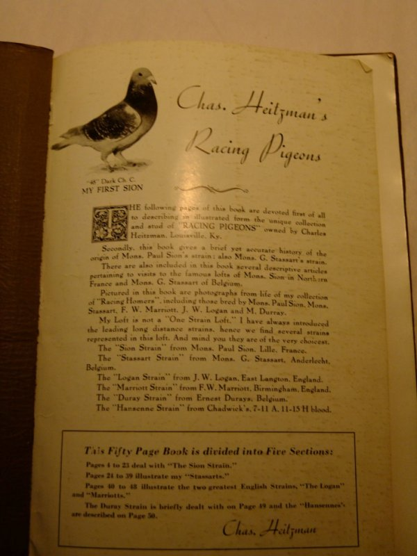 famous American fancier Chas HEITZMAN ' book about SION racing pigeons