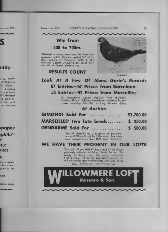 World Famous Albert GORIN ' pigeons part two