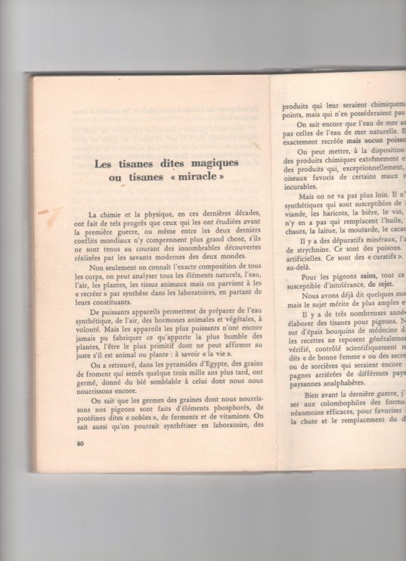 tisanes  page 80