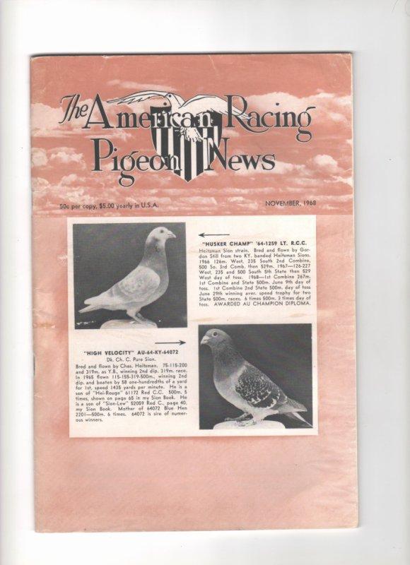 "revue American racing pigeon News """