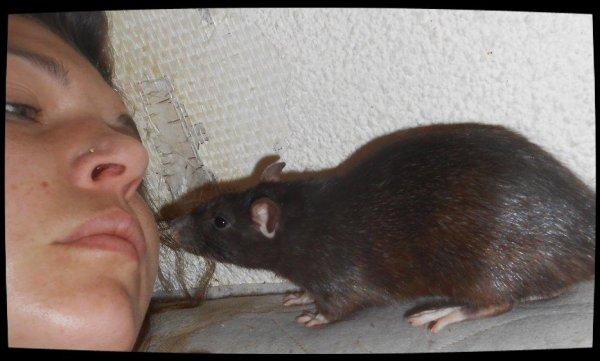 RITA (Senorita) bizouillant son humaine (moi)