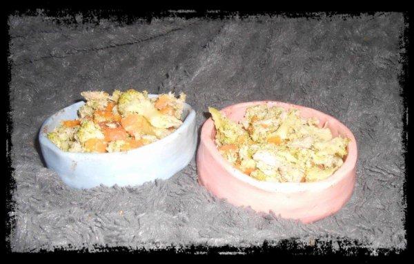 RECETTE RATS: Thon nature, carotte et brocolis cuits