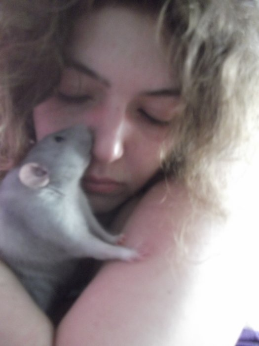 les petits RATS-ketteurs de lily