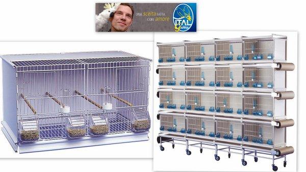 cages d'élevages italiennes.
