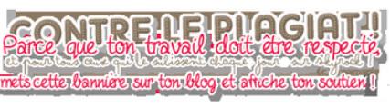Bonjour et bienvenu sur mon blog