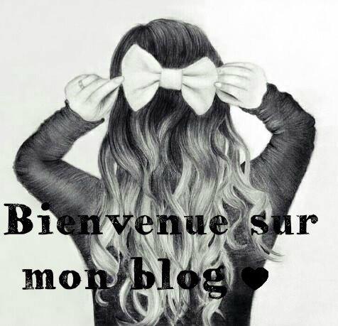Bienvenue sur mon blog et bonne visite! ^^