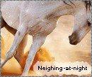 Photo de neighing-at-night