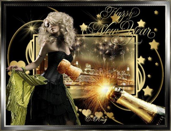 Bonne Année 2011 à tous gros bisous mes amies