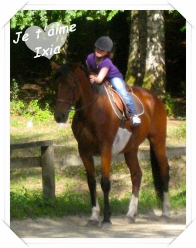"""ConcourPhoto du plus beau couple """"Cavalier-cheval"""""""