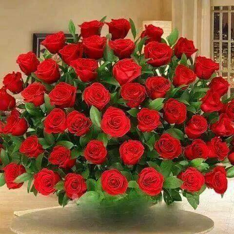 AurelieARNAUD1985  a fêté ses 34 ans le 04/01/2019, pense à lui offrir un cadeau jeudi 03 janvier 2019 23:20